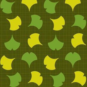 Spring Ginkgo 2B