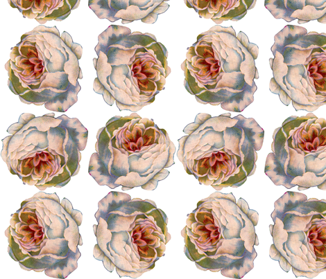 Roses2 fabric by victoriagolden on Spoonflower - custom fabric