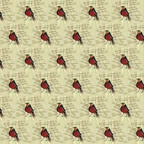 ROBINfabric