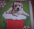 Rrrlab_puppy_christmas_stocking_wall_hanging_comment_115607_thumb