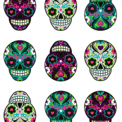 Sugar Skull on White