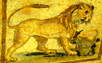 Lion of Ancient Greece