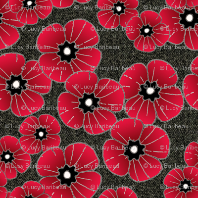 Lest we forget poppies
