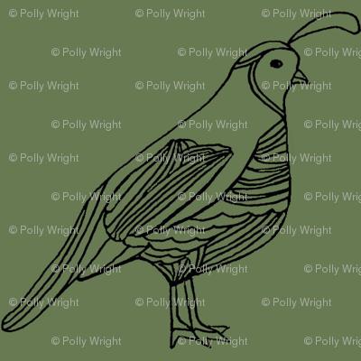 quail1
