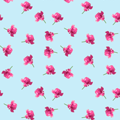 Unforgettable rose ditsy print -- on pale blue