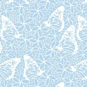 White Butterfly Lace on Icy Blue