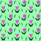 Rrtulip-star_shop_thumb
