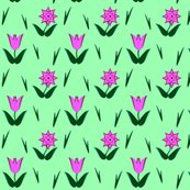 Rrrtulip-star_shop_thumb