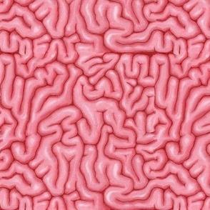 Neon Pink Brains