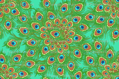 peacock_by_the_numbers_1a