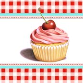 Rpatricia-shea-pik-cupcake-gingham-bag-42-36-150_shop_thumb