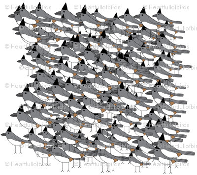 flock of titmice