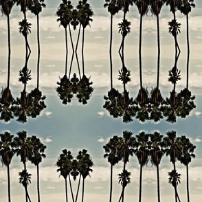 palm trees in the delta breeze