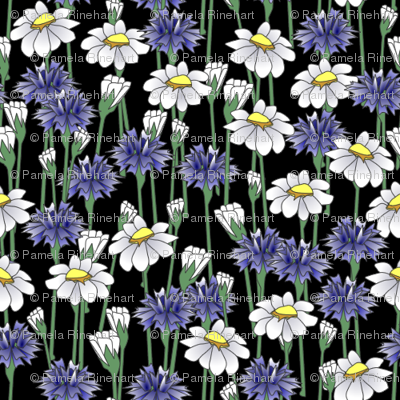 bachelor_buttons_and_daisies