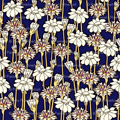 bachelor_buttons_and_daisies primary