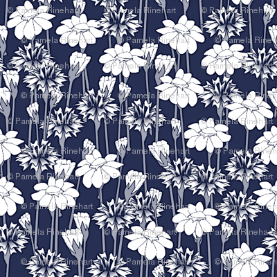 bachelor buttons and daisies big navy
