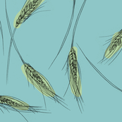 Wheat (blue)