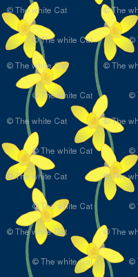 Along the Daffodil Path -- on navy