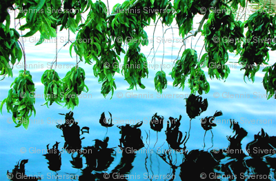 Japanese_gardens_leaves_reflection