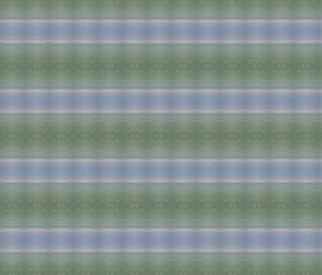 _MG_5695DryBrsh fabric by glennis on Spoonflower - custom fabric