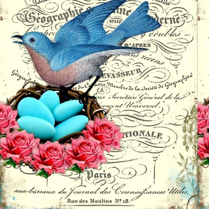french_bluebird_nest
