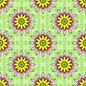 Rrmarcsibulb_passionflower_shop_thumb