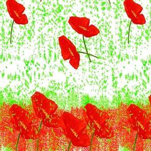 Poppies_Panel