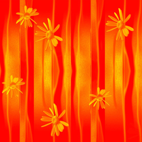 Daisies_on_orange