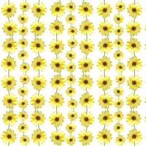 Sunflower Ribbons