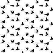Rdoves_in_flight_black_on_white_shop_thumb