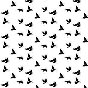 Doves in Flight, Black on White