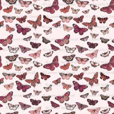 Flutter, Butterflies Magenta