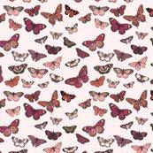 Rrrrrrbutterflies1b_shop_thumb