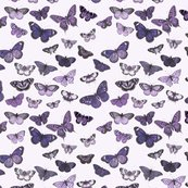 Rrbutterflies1c_shop_thumb