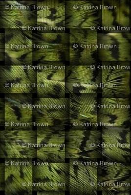 kakapo_camo_12