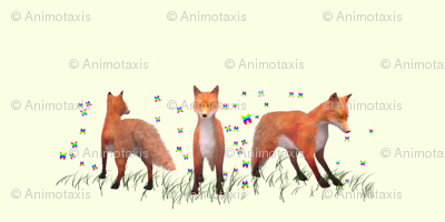 Playing Foxes, S