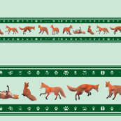 Red Fox Border, Green