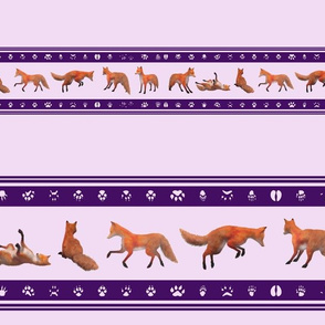Red Fox Border, Purple