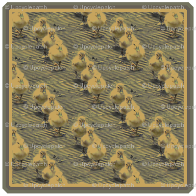 3 little Ducks Patch