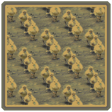 3 little Ducks Patch fabric by upcyclepatch on Spoonflower - custom fabric