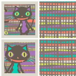 Rocket Cat coordinates