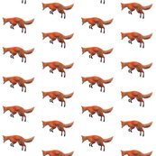 Rr026-leaping_red_fox__s_shop_thumb