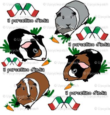 Italian Guinea Pigs