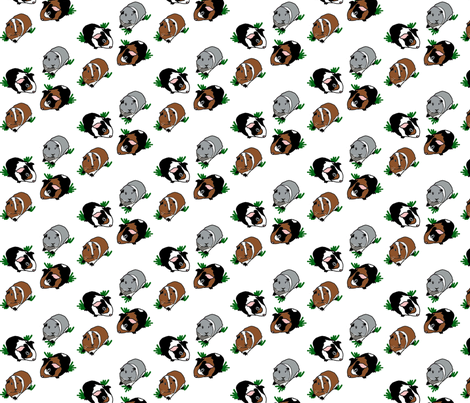 Medium Guinea Pigs - Stripe fabric by upcyclepatch on Spoonflower - custom fabric
