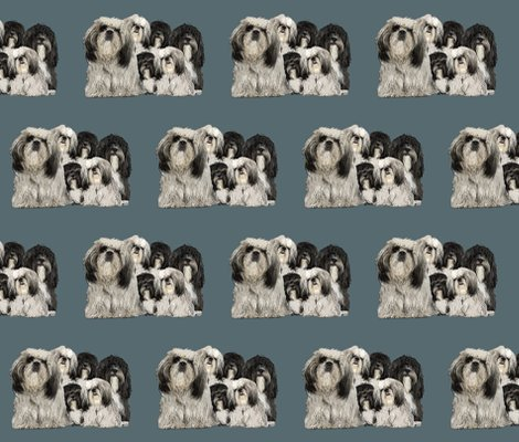 Rrrtibetan_terriers_shop_preview
