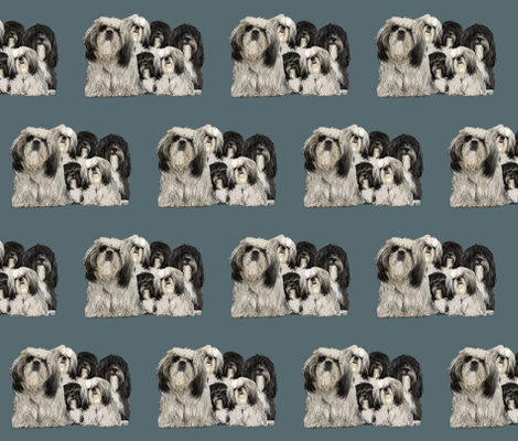 shiih Tzu grouping fabric fabric by dogdaze_ on Spoonflower - custom fabric