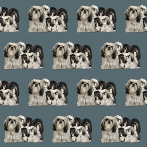 shiih Tzu grouping fabric