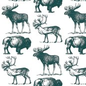 Rvintage_moose_bison_and_caraboublue_shop_thumb
