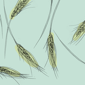 Wheat (mint)
