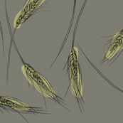 Wheat (slate)